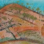 euriowie hills2