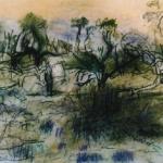 emu lake2
