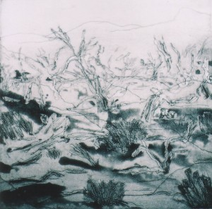 Cawndilla Lake - etching